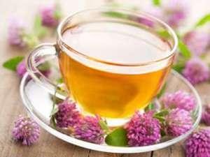 有哪些中药材不能和茶水同服
