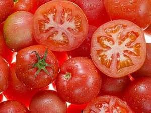 怎么吃番茄减肥 3款瘦身食谱推荐