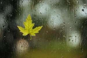 淋雨之后怎么预防感冒 淋雨后属于什么感冒