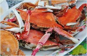 螃蟹做法大全及吃法!