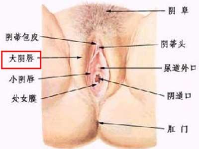 史上最震撼的女性生殖器真实图片4
