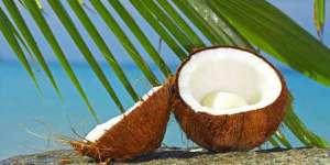 椰子汁有什么功效?什么人适合喝椰子汁呢?